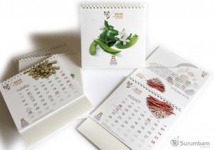 Calendario Ajuntament Eivissa
